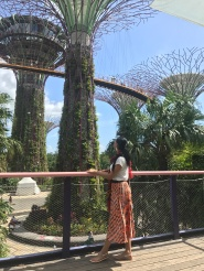 gardens by the bay-Szingapúr